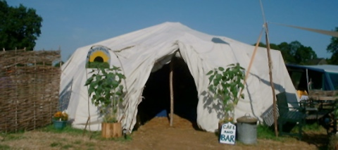 0623%20tent%20sunflower.jpg