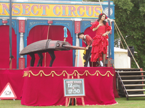 Camp%20Bestival%20Insect%20circus%202.jpg