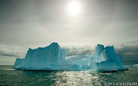 icebergsun