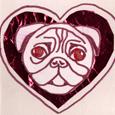 valentine-pug