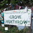 Grow Heathrow thb