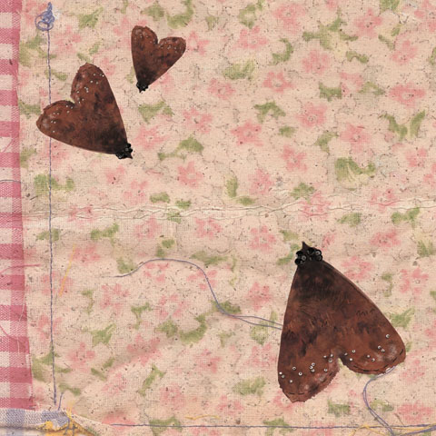 Kimberley-Dodsworth-Moths