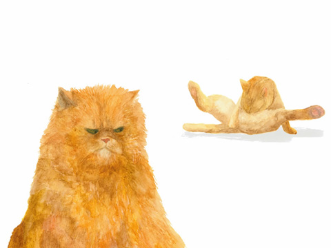 Lucy Wragg cats