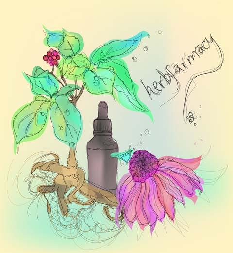Lisa-Stannard,-Herbfarmacy,-Ginko&Echinacea