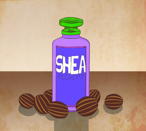 SheaAlchemyBottleIllustration_by_JessGu
