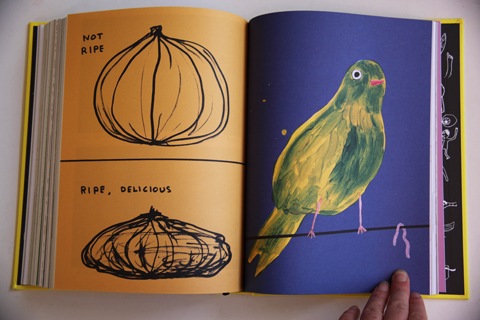 Essential David Shrigley-Not Ripe