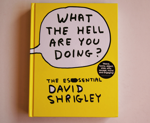 Essential David Shrigley-cover