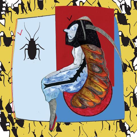 cockroach tour maria papadimitriou