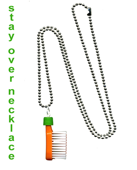 stay over toothbrush pendant by plastic seconds