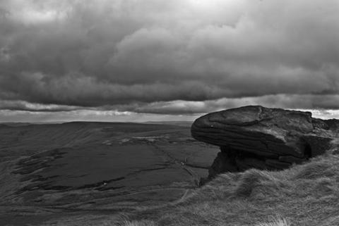Jonathan Marsh landscape