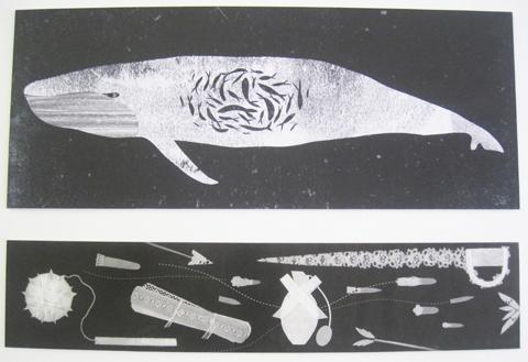 Kingston Illustration graduate exhibition 2011 Ellie Tzoni whale
