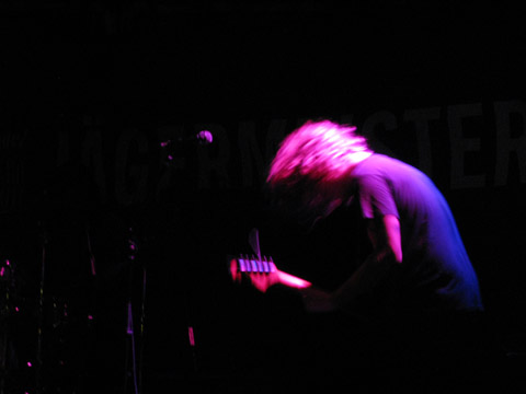 Ty Segall by Laura Lotti