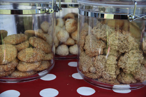 Wood Festival 2011 good Biscuits-photography by Amelia Gregory