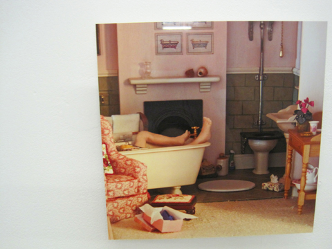 Amersham and Wycombe Photography degree show Free Range 2011-Christine Leheup
