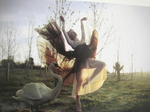Amersham and Wycombe Photography degree show Free Range 2011-Antonia Dolani