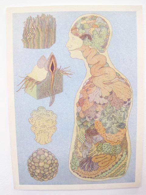 Brighton University illustration graduate show 2011-Katie Scott