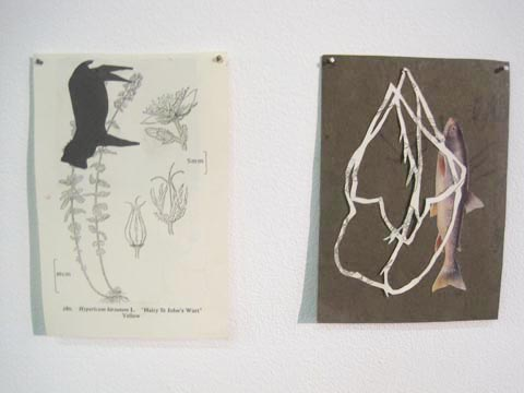 Brighton University illustration graduate show 2011-Jennifer Bailey