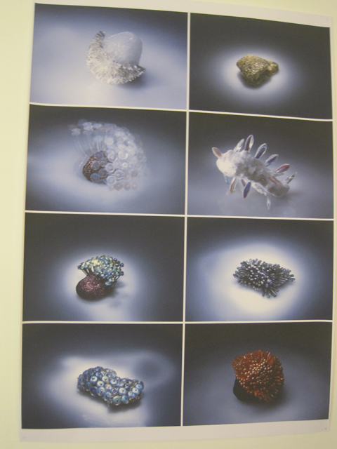 Central Saint Martins textile futures graduate exhibition 2011 review-photography by Amelia Gregory
