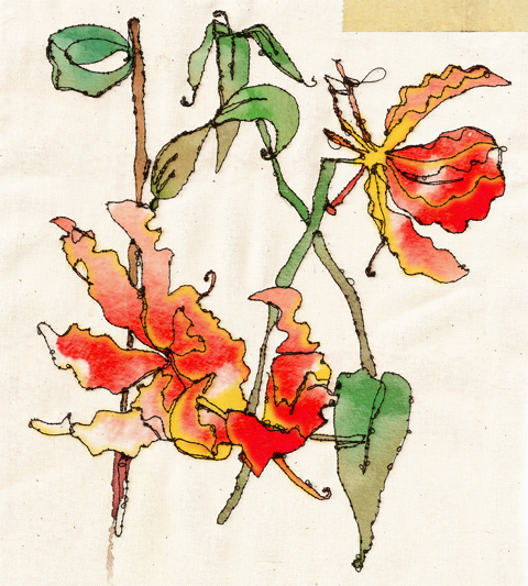 Gloriosa Rothschildiana Hampton Court Flower Show by Toni Bowater