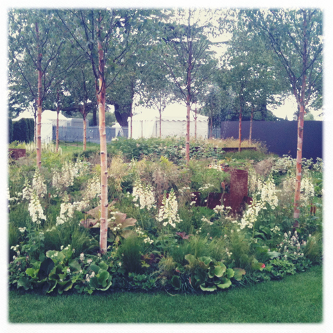 RHS Hampton Court Flower show review 2011-all photography by Amelia Gregory