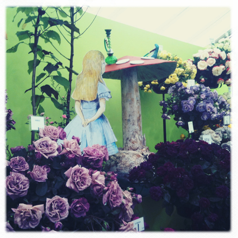 RHS Hampton Court Flower show review 2011-photo by Amelia Gregory