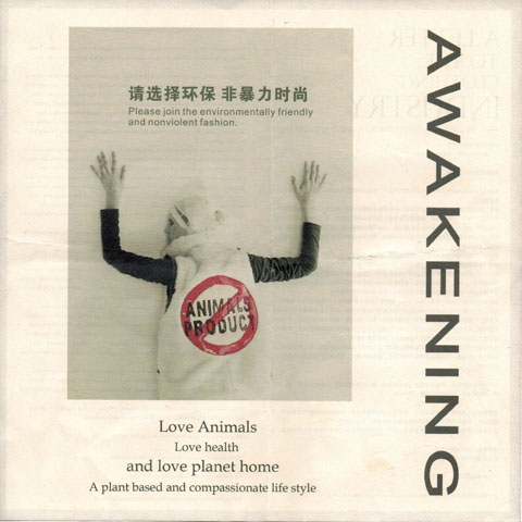 Awakening-Shenzhen Exhibition Pamplet