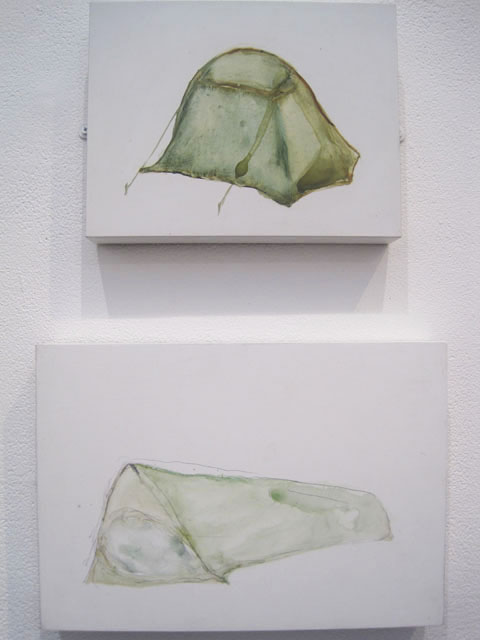 Jerwood Drawing Prize review 2011-Ground Truth and Deep Grief by Louisa Fairclough
