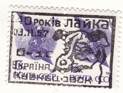 Space dog stamp purple