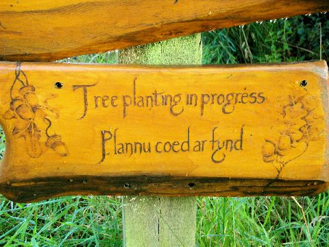 Tree Planting sign at Tir y Gafel