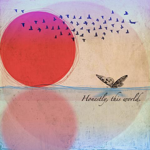 the moth and the mirror Album Artwork fiona watson