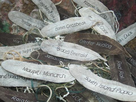 Gone Birds -Empty Nest by Jackie Hodgson