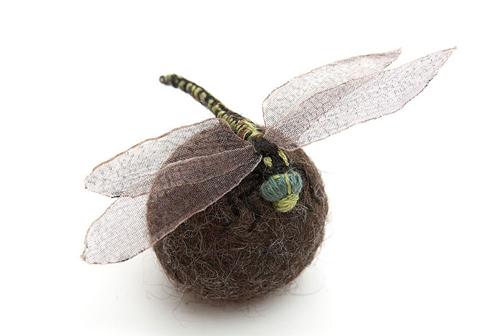 Claire Moynihan byard dragonfly