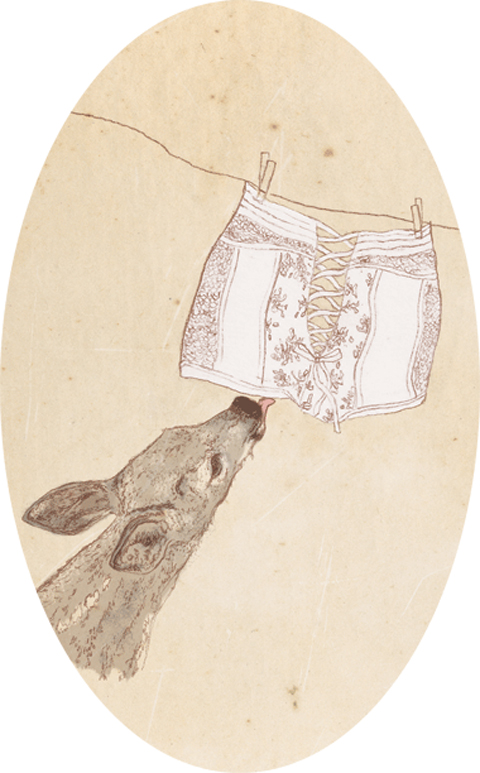 Charini lingerie S-S 2012 illustration by Laura Griffin