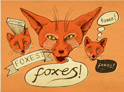 Foxes! by Kathryn Corlett