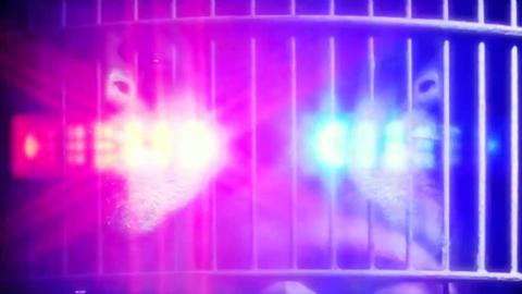 Kotki Dwa poison video police