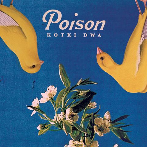 Poison_kotki dwa