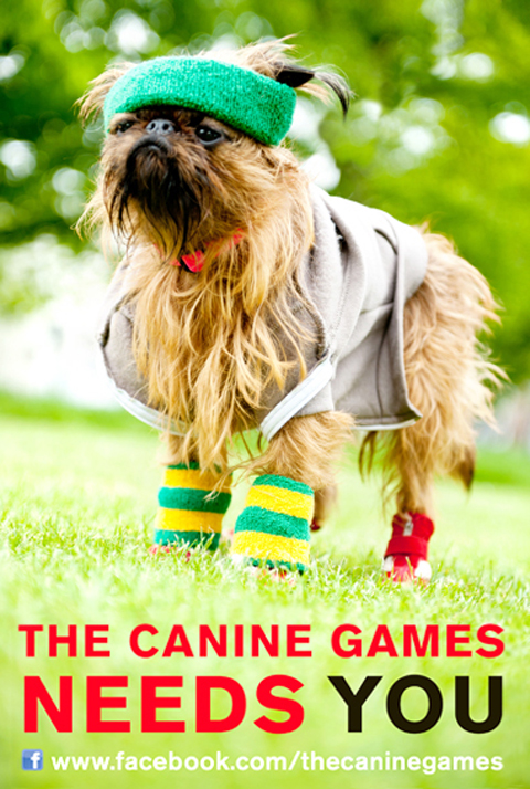 the canine games