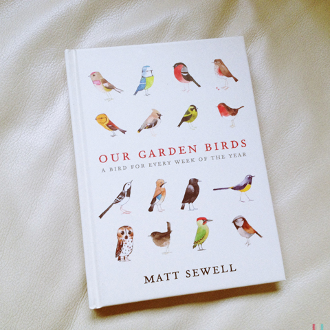 our garden birds matt sewell