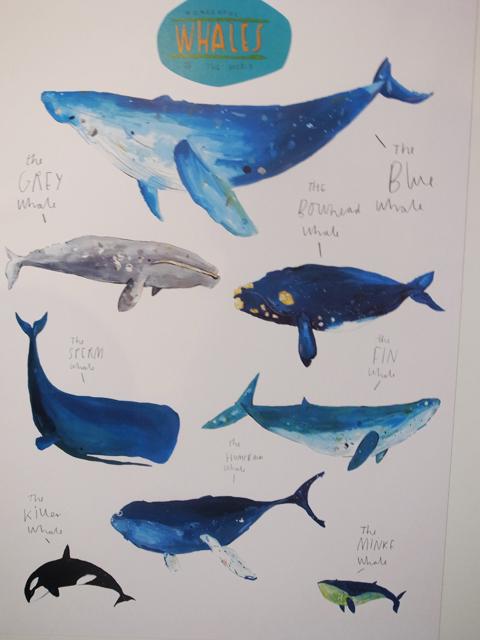 New Designers 2012-20120706_faye bradley