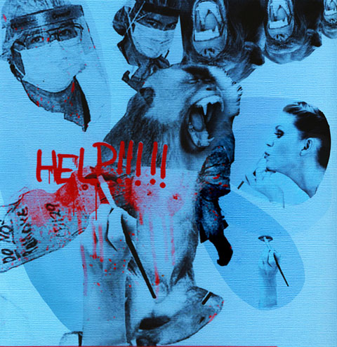 Anti Animal Testing By James McCourt
