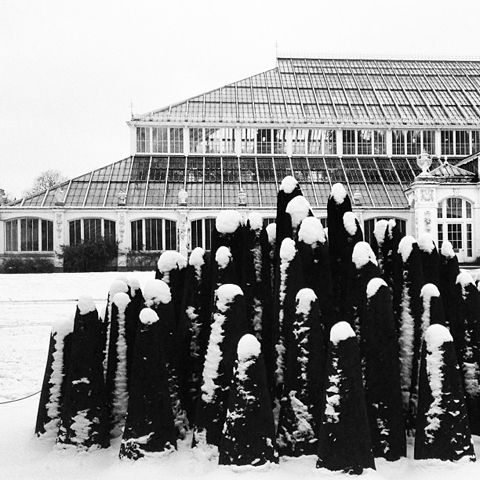 David Nash temperate house
