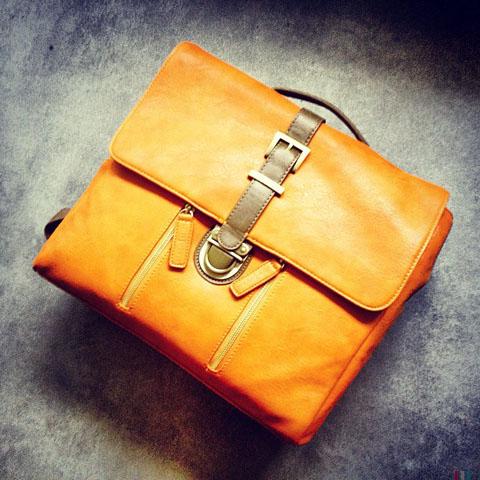 kelly moore SLR camera handbag