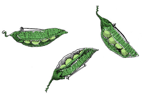 Hipota's Peas by May van Millingen
