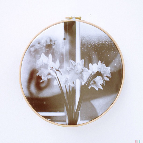 A bunch of daffodils- photography showcased in an embroidery ring by Erzsebet Toth