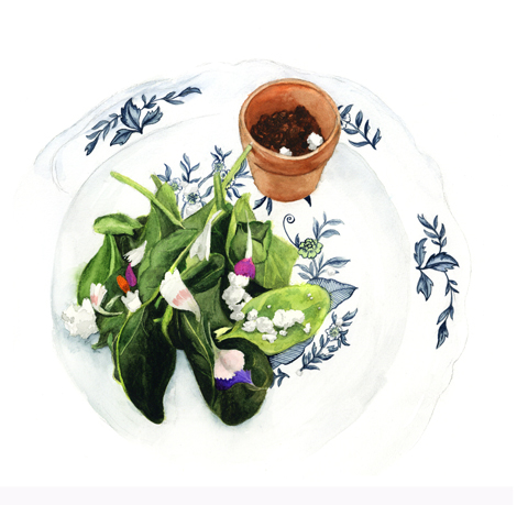 Art of Dining's edible soil with freshly picked salad. Illustration by Rebecca Corney
