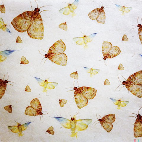 Moths by Natalie Faith Turner