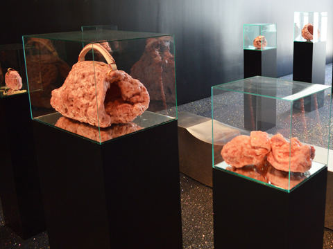 Andrea Hasler, Burdens of Excess, 2013, installation image 1