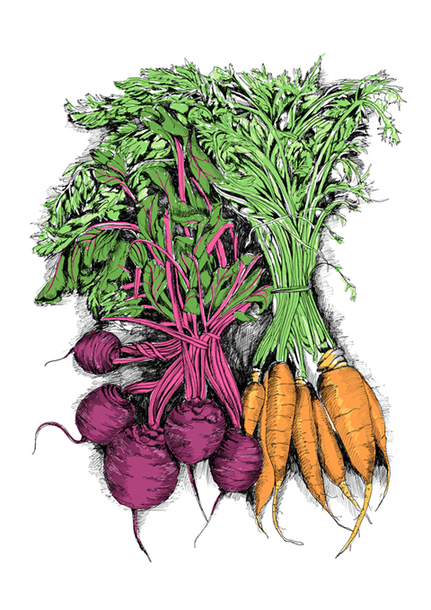 May van Millingen Bunched beetroot and carrots