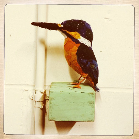 Kingfisher by Abigail Brown
