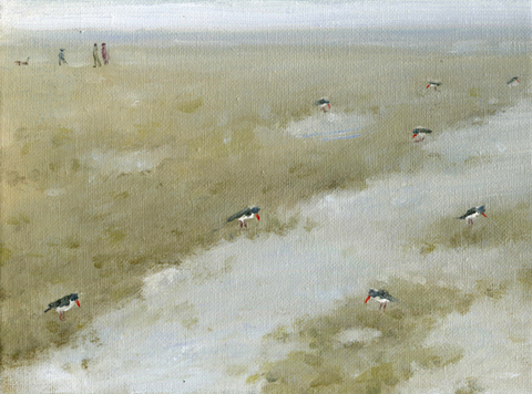 oyster-catchers-greg-becker